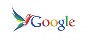 الگوریتم جدید گوگل مرغ مگس خوار