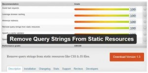 خطای Remove query strings from static resources چیست