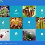 طراحی وب سایت سرزمین گل – گیاهان حشره خوا و گوشتخوار
